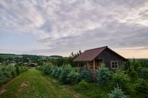 Burdanowka_d2_135