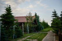 Burdanowka_d2_154